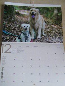 ハッピーとシュガーのカレンダー