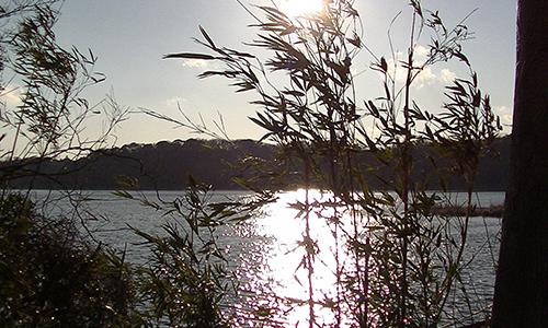 夕日が綺麗な佐鳴湖